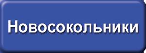 ТВ-ком Новосокольники
